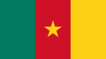 1xbet Cameroun