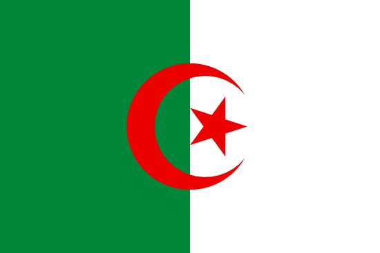 1xbet Algeria