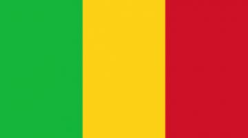 1xbet Mali